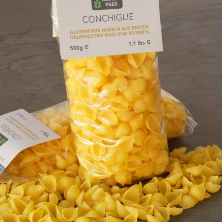 copy of Conchigilie